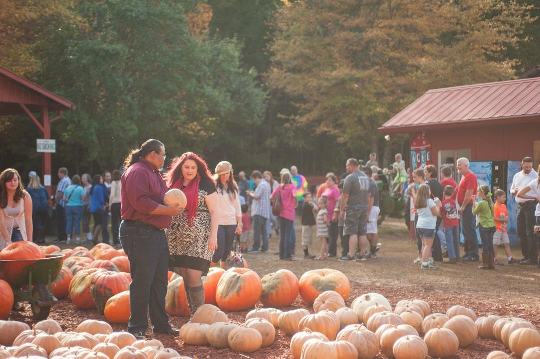 Autumn Engagement Session at the Pumpkin Patch  // Amaretta & Steve