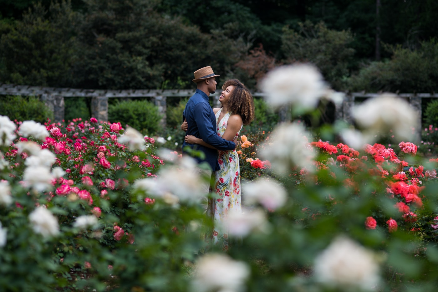 couple hugs in field of white and red roses in Raleigh