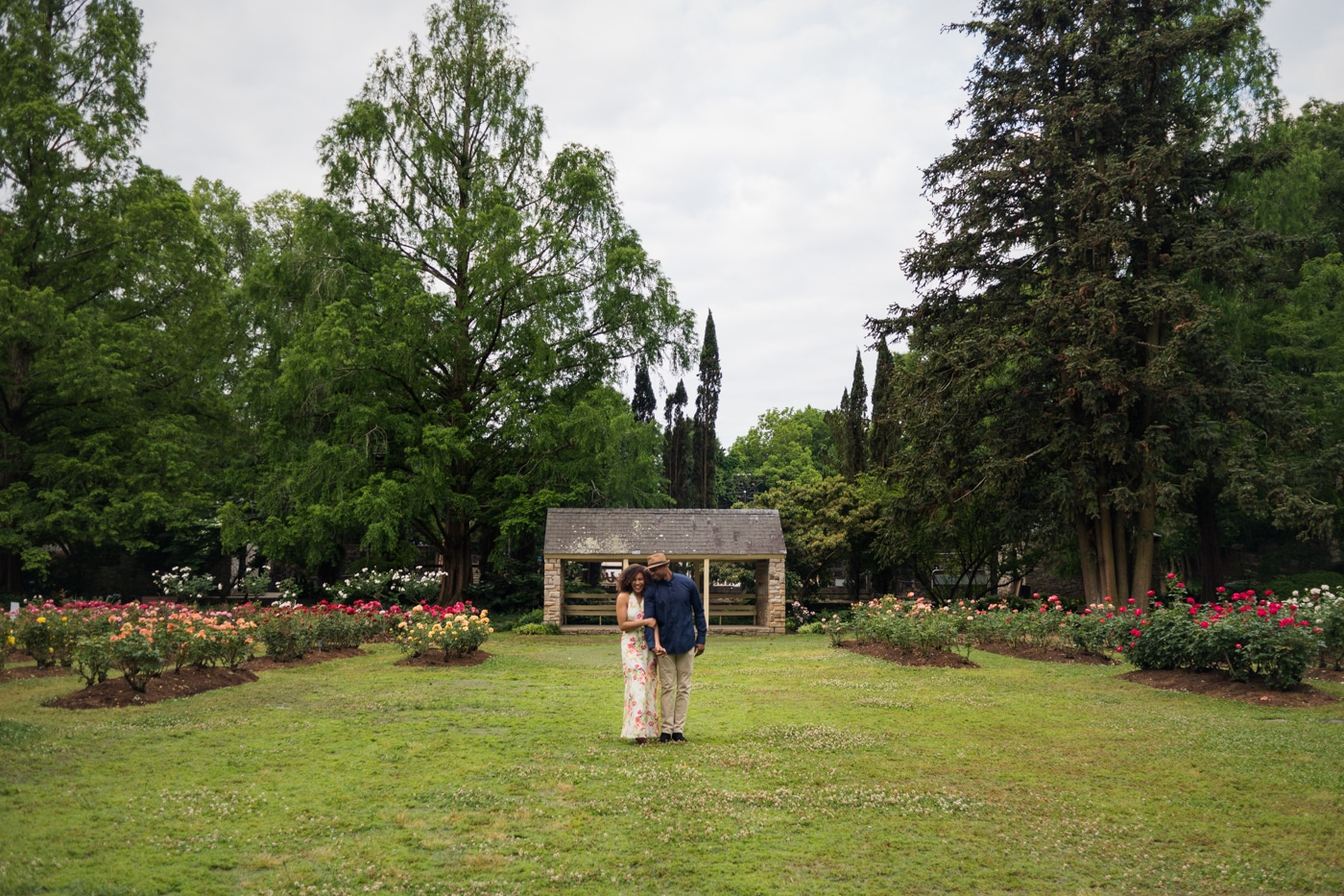 couple hugs in field of roses in Raleigh NC