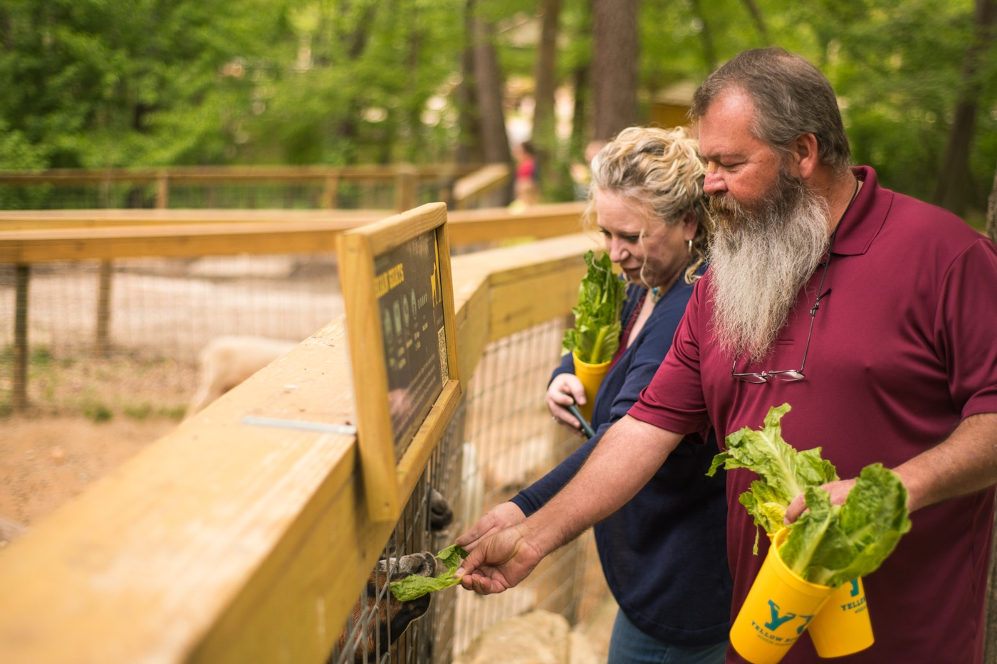 couple feeds animals at Yellow River Wildlife Sanctuary