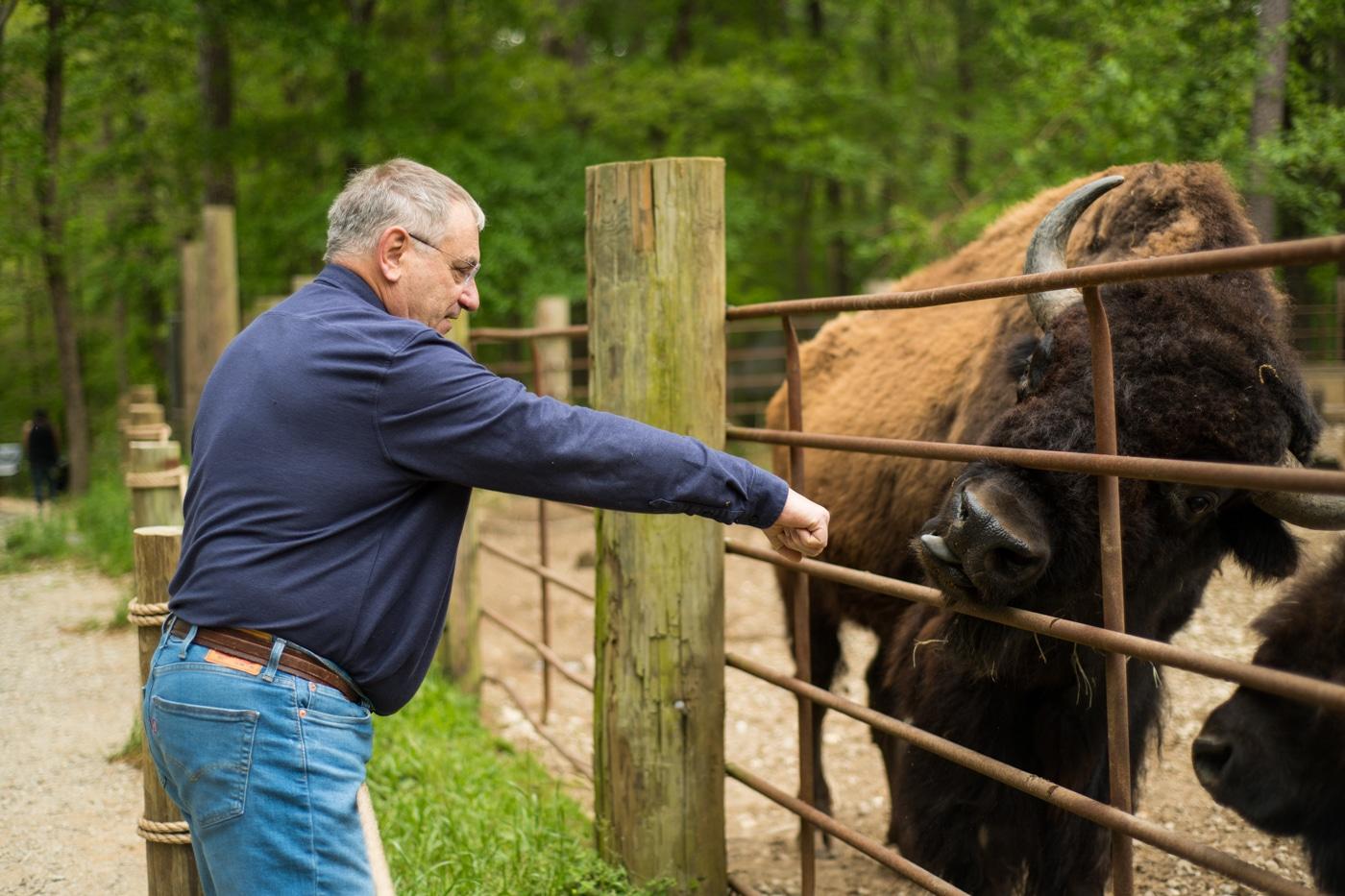 granddad feeds bison during family photos in Atlanta
