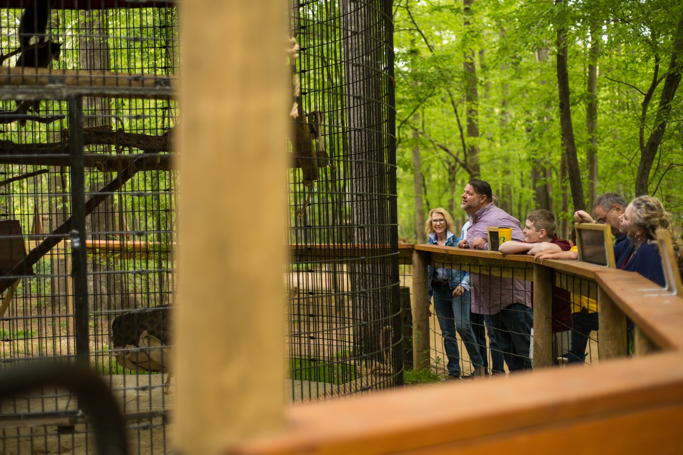 family looks at animals during family photos at the Yellow River Wildlife Sanctuary