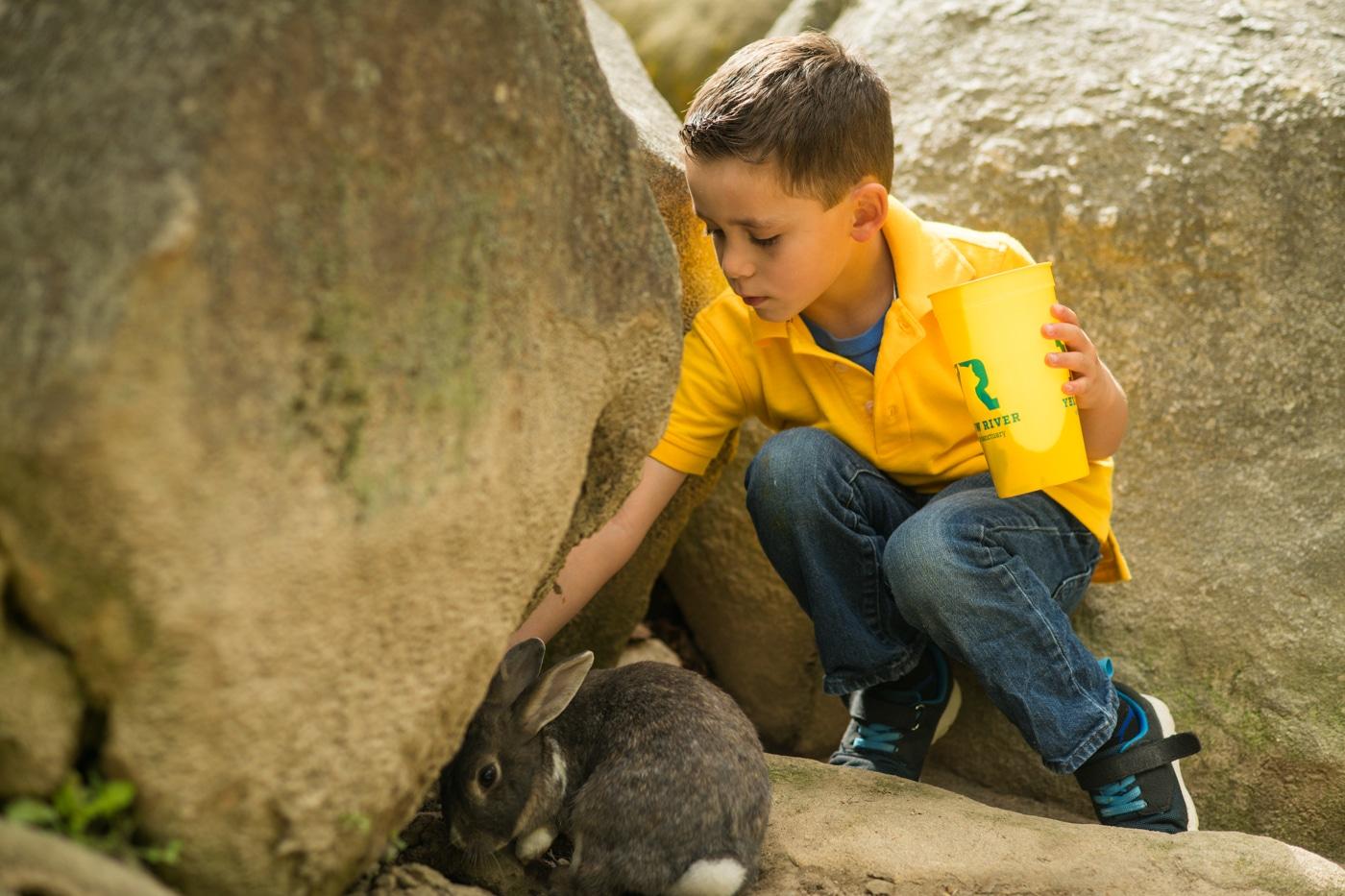 young boy feeds rabbit during family photos in Atlanta
